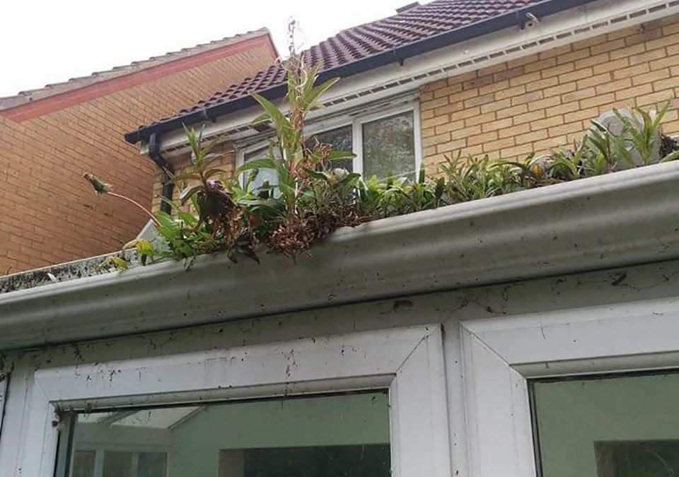 How important is it to get your gutters checked?